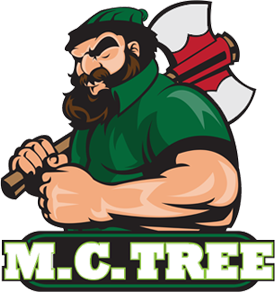 Tree Trimming Services Tree Pruning, Farmington Hills, Michigan